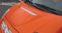LESTER nasávač přední kapoty Citroen C2